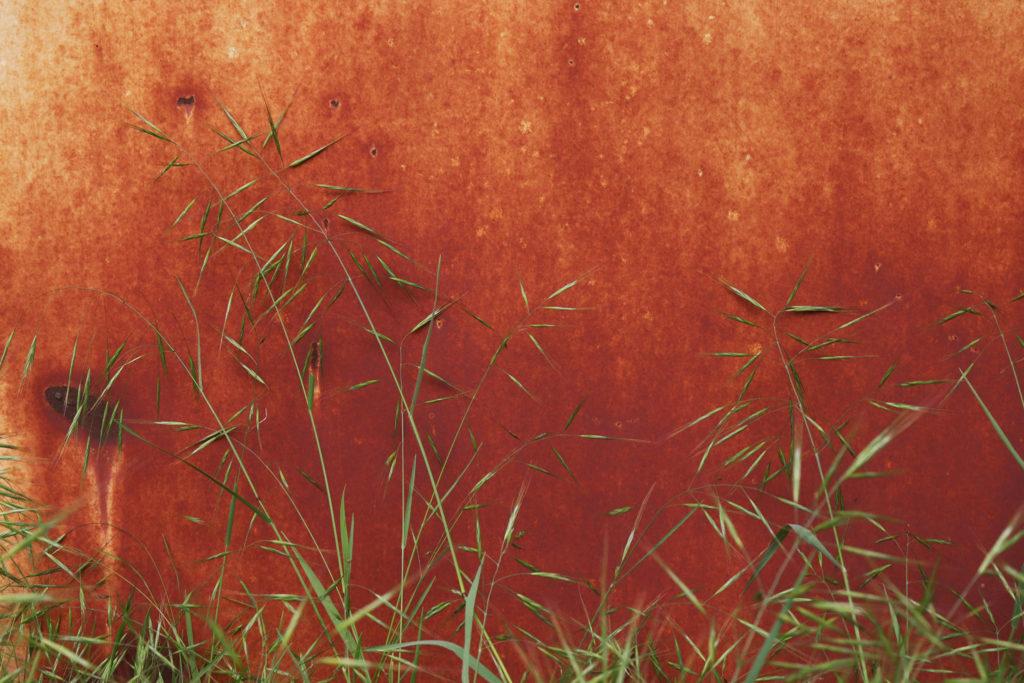 Oxydation et herbes folles